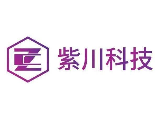 广州紫川电子科技公司智能检测仪检测报告案例
